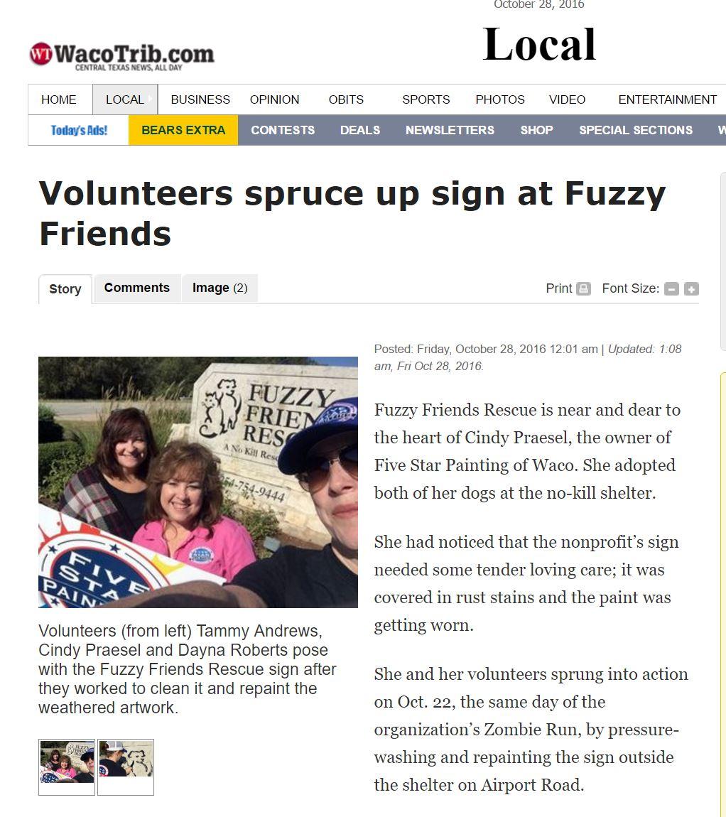 FSP Fuzzy Friends.jpg