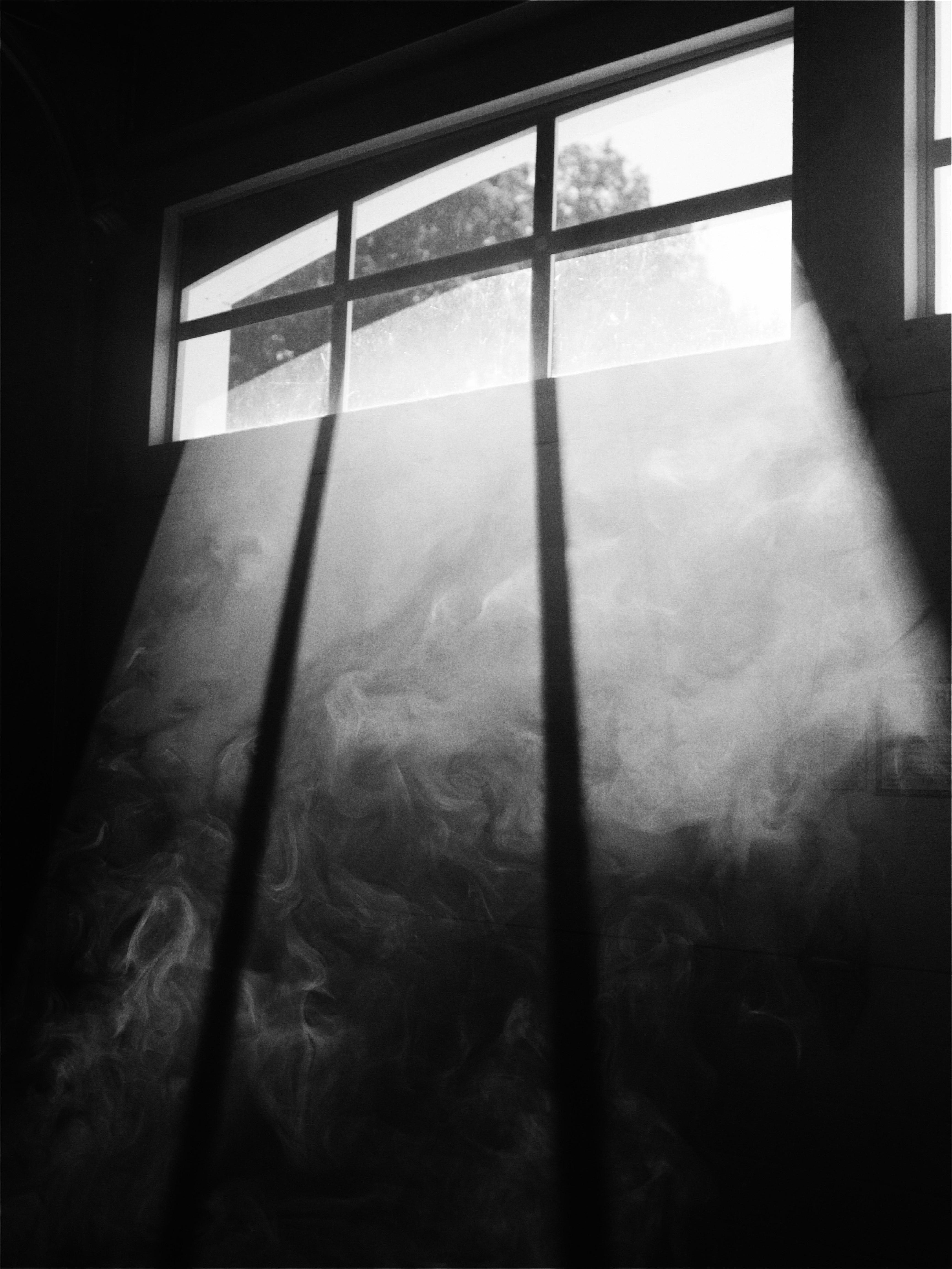 garage window taylor-young-183282.jpg
